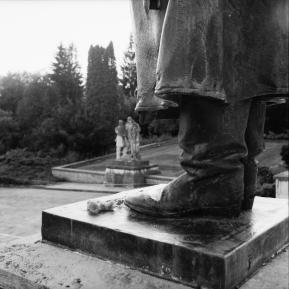 En bukett i Svidnik.